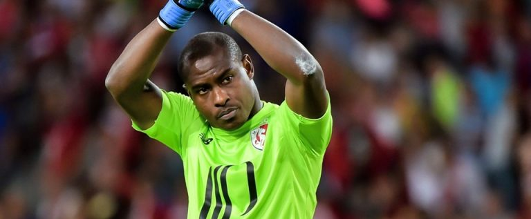 Enyeama Appointed Goalkeeper Coach By A French Club