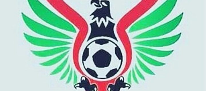 NPFL AT 30: How Professional Is The League?