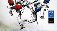 10 States Battle For Gold In N-YSA Taekwondo Youth Invitational Tournament